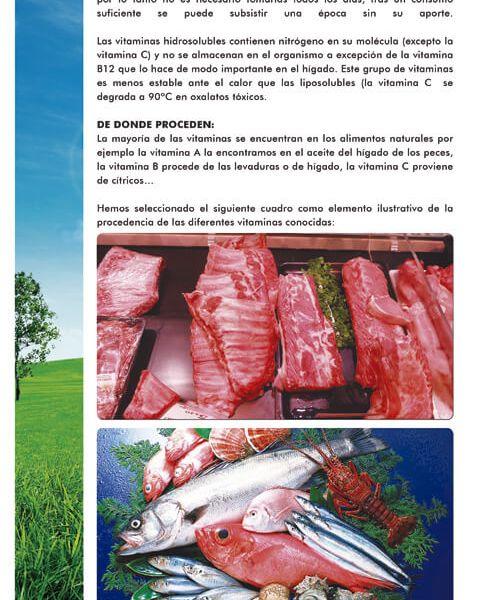 14-amododeunapequeñahistoria-06
