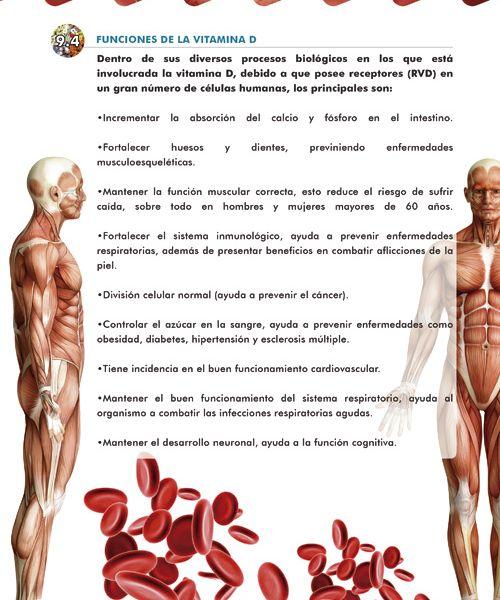 41-las-vitaminas-y-la-cosmetica-06