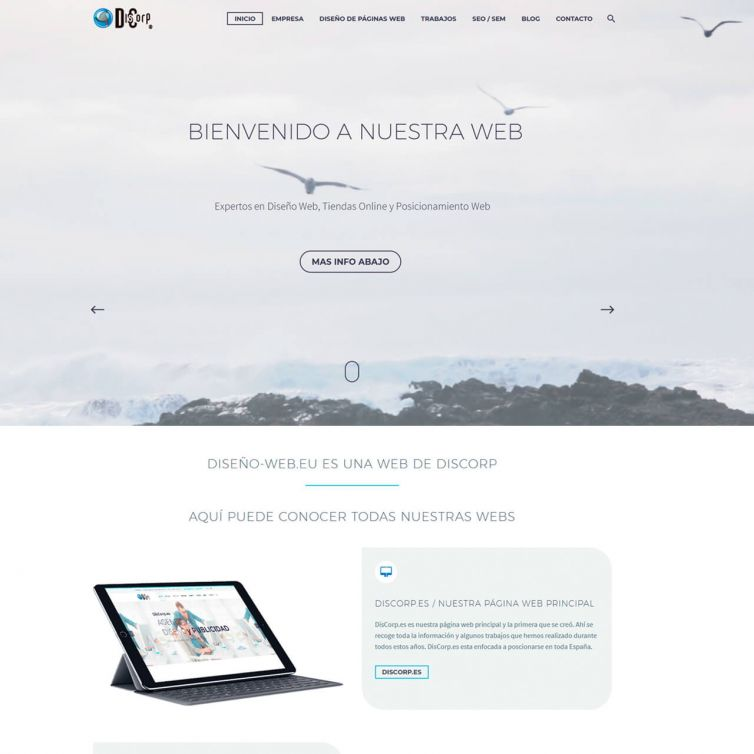 Página Web Diseño Web eu
