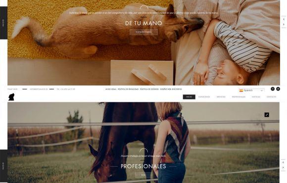 Página Web De Tu Mano Crematorio Mascotas