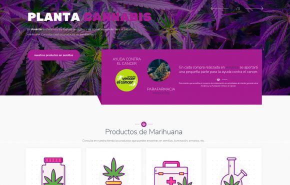 Página Web Semillas de Valencia